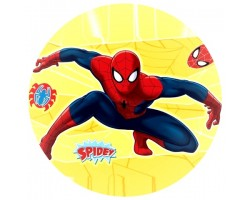 24831R disc vafa Spiderman D20cm