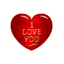 97549A5 vafa inima I  LOVE YOU 20x15cm